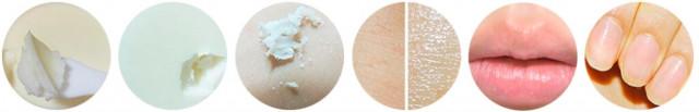 Универсальный крем с маслом Ши Milky Piggy Shea Butter карт